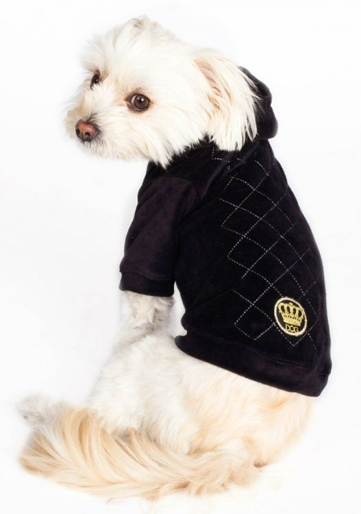 for with this soft velvety velour Argyle Hoodie #maltese #doghoodie