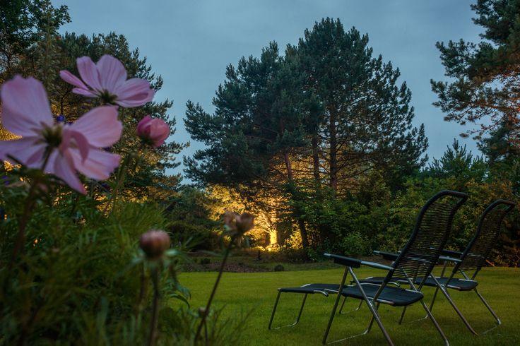 Ferienbungalow an der Nordsee: Ein Ort zum Entschleunigen mitten in der Natur, ob in den Lodges, oder auf den nach Süden liegenden Terrassen mit Blick auf die einzigartige Heide-Landschaft.