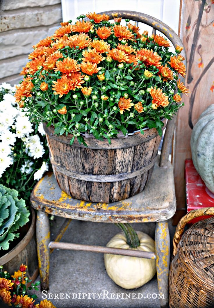 712 best fall is for planting your porch images on Small front porch decorating ideas for fall
