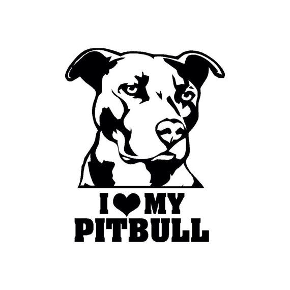 best 25 pit bull art ideas on pinterest auto electrical wiring diagram