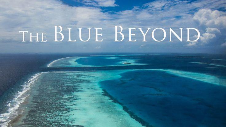 The Blue Beyond - Diving Maldives 2016 - Tauchen Malediven