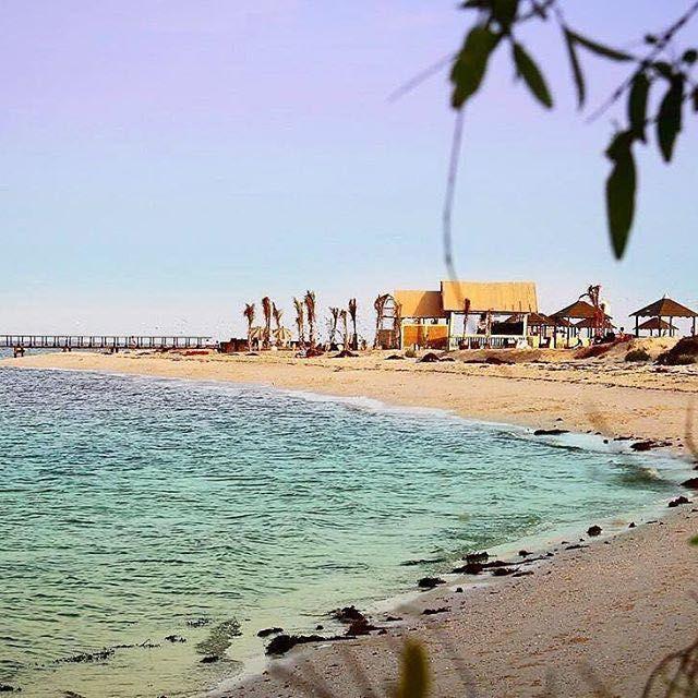 جزيرة أحبار جيزان المملكة العربية السعودية ٢٢ Saudi Arabia Outdoor Beach