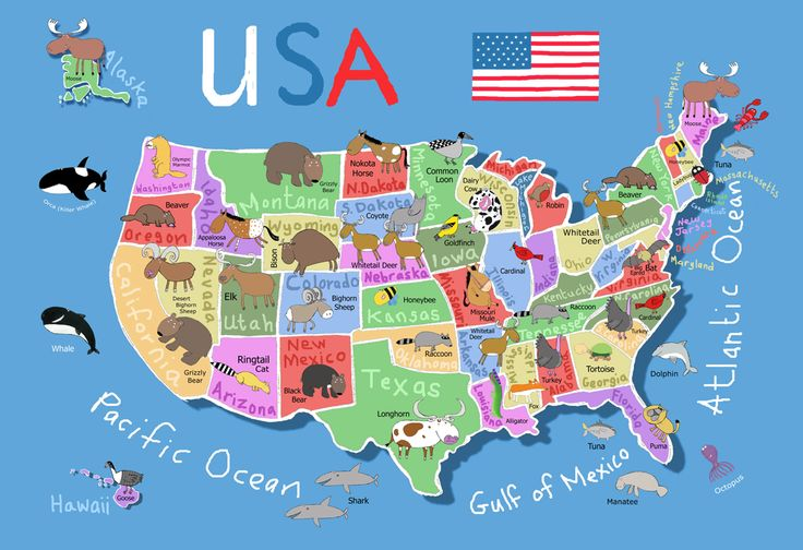 printable map of usa for kids | Its's a jungle in here!: July 2012