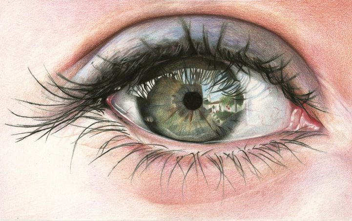 My Modern Met Colored Pencil Drawing by Photorealism Artist, Amy Robins