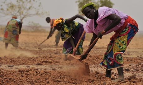 Sahel's chronic hunger crisis demands long-term solutions  Above-average rainfall and falling food prices do not signal an end to food insecurity in Africa's Sahel region    Read PovertyMatter's Blog in the UK's Guardian online paper for more information!