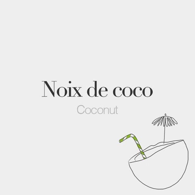 Noix de coco (feminine word) | Coconut | /nwa də ko.ko/  Drawing: @beaubonjoli.