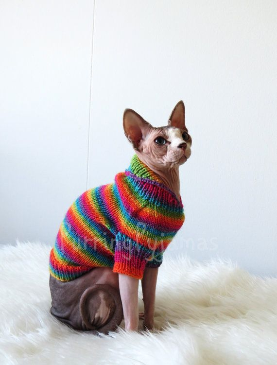 Cat clothes  warm cat sweater sweater for cat by PurringPyjamas