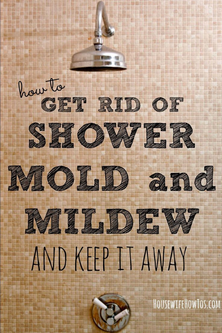 Tired of fighting shower mold and mildew? Here's help! Get rid of mold and mildew, then keep them from coming back for good, with these simple steps.