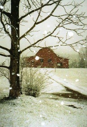Barn in Winter <3