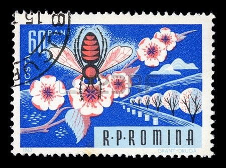 ROMANIA CIRCA 1963 Vintage postage stamp printed by the Romanian Post shows honey bee on almond tree Stock Illustration