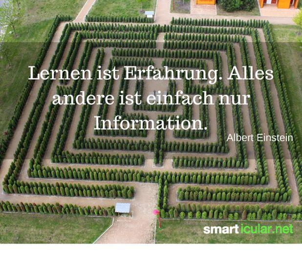 Lernen ist Erfahrung. Alles andere ist einfach nur Information. - Albert Einstein