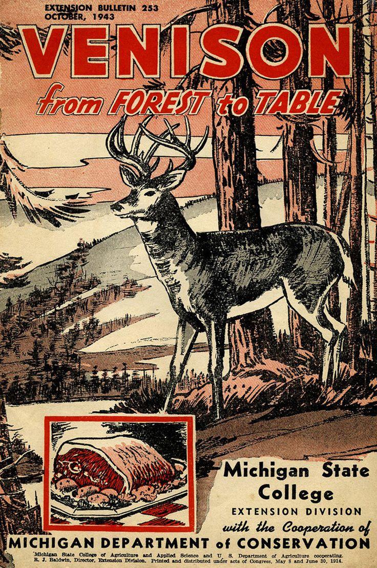 1224 best whitetail deer images on pinterest deer family deer