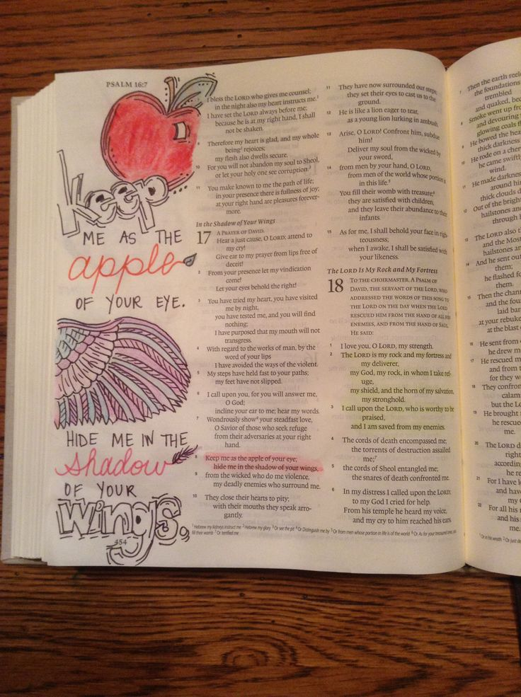 Bible Verses From Psalms - Bible Study Tools