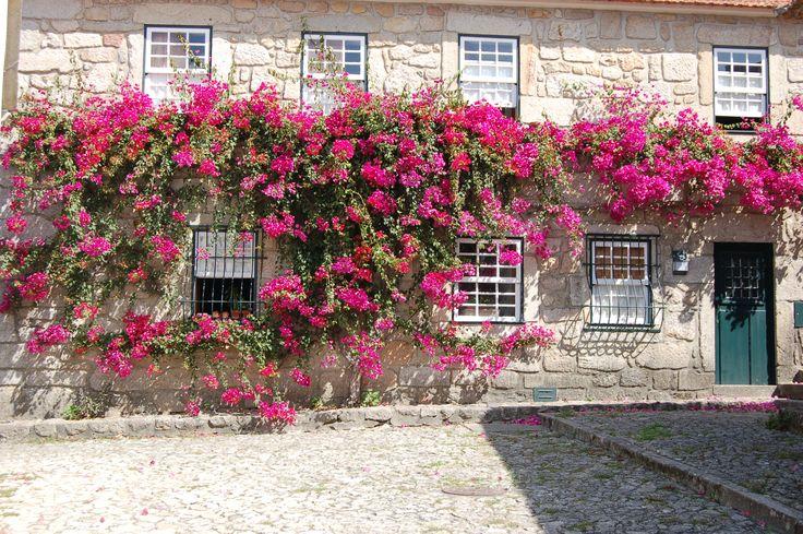 Vila Nova de Cerveira - Portugal Foto: André Lima