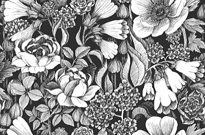 Oodi+Black+White+(17920)+-+Marimekko+Wallpapers+-+A+bold+and+beautiful+floral+design+with+large+scale+flowers.++Shown+here+in+the+metro+classic+black+and+white.+Paste+the+wall.+Please+request+sample+for+true+colour+match.