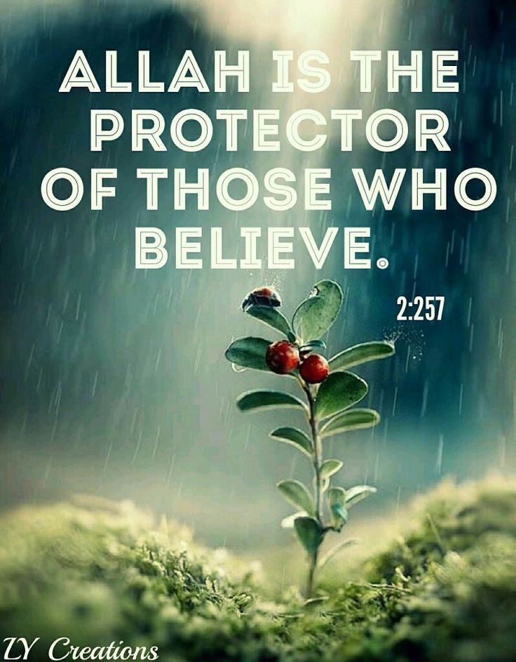 Allah is the protector of those who believe ...2:257  ❤❤♥For More You Can Follow On Insta @love_ushi OR Pinterest @ANAM SIDDIQUI ♥❤❤