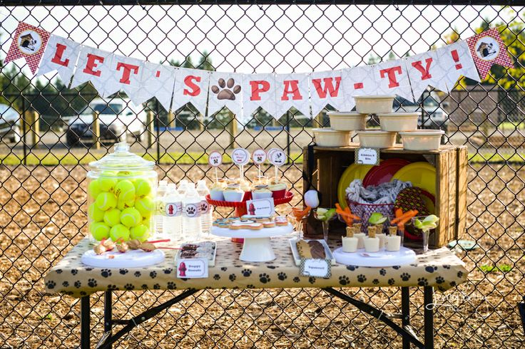 Puppy Paw-ty; A Party for Your Pet!