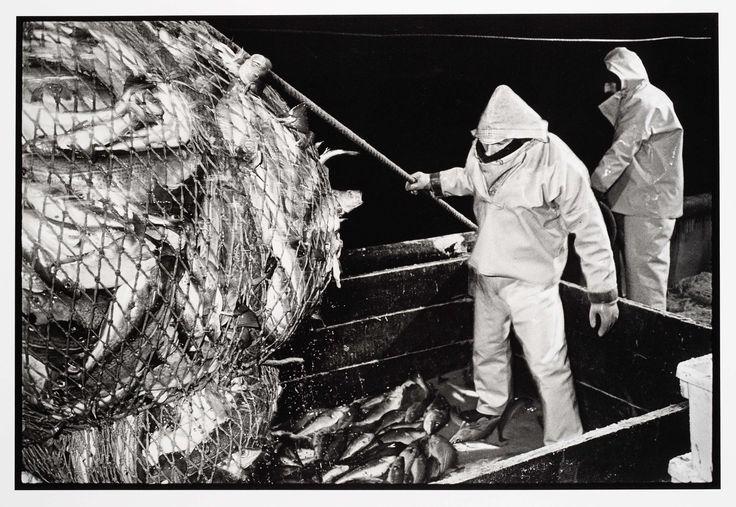 HD57 Elvira. 's Nachts op zee: het binnenhalen van de vis, Joost Guntenaar, 1981