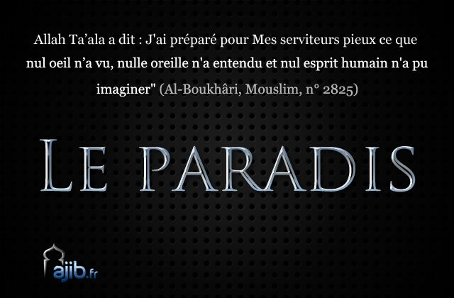Les habitants du Paradis - Islamiates