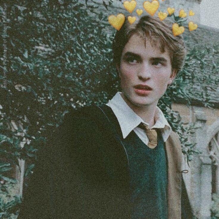 cedric diggory harrypotter Draco harry potter, Harry