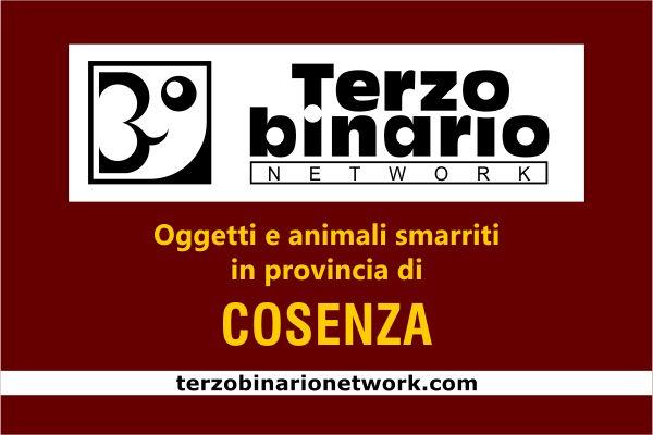 Oggetti e animali smarriti in provincia di Cosenza
