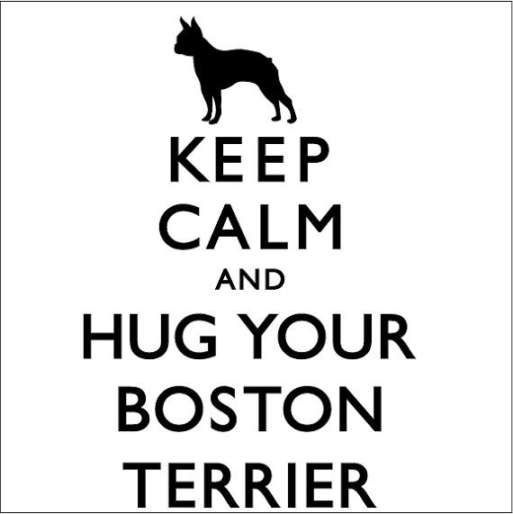 keep calm and hug your boston terrier - Boston Terrier Coloring Page