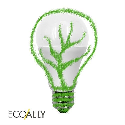 Did you know? LEDs are the most energy efficient lighting, using 90% less energy than traditional incandescent bulbs