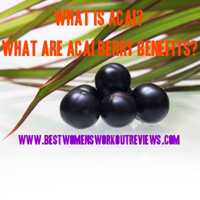 #WhatIsAcai & #WhatAreAcaiBerryBenefits? Click the link to the right to find out: http://www.bestwomensworkoutreviews.com/what-is-acai-what-are-acai-berry-benefits
