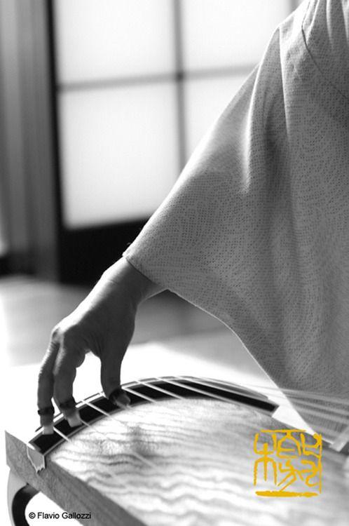 Japanese instrument, Koto 琴 https://www.facebook.com/tabaca.magno?hc_location=timeline