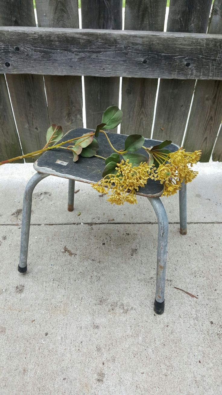 Vintage Foot Stool Kitchen Stool Step stool. Metal Step Stool Costco & 104 best antique cosco stools images on Pinterest | Costco Step ... islam-shia.org