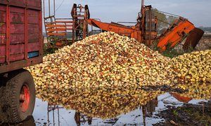 Sainsbury's invests another £1m in battle against #foodwaste