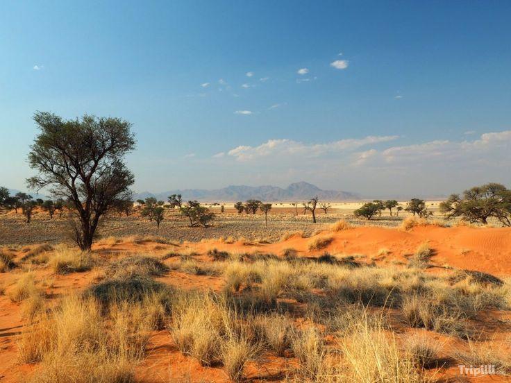 Road trip - Namibie - Afrique