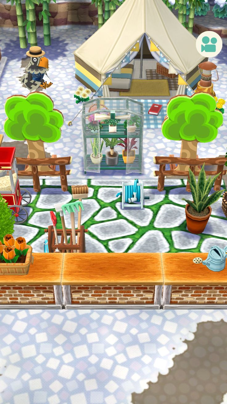16++ Animal crossing o hare images