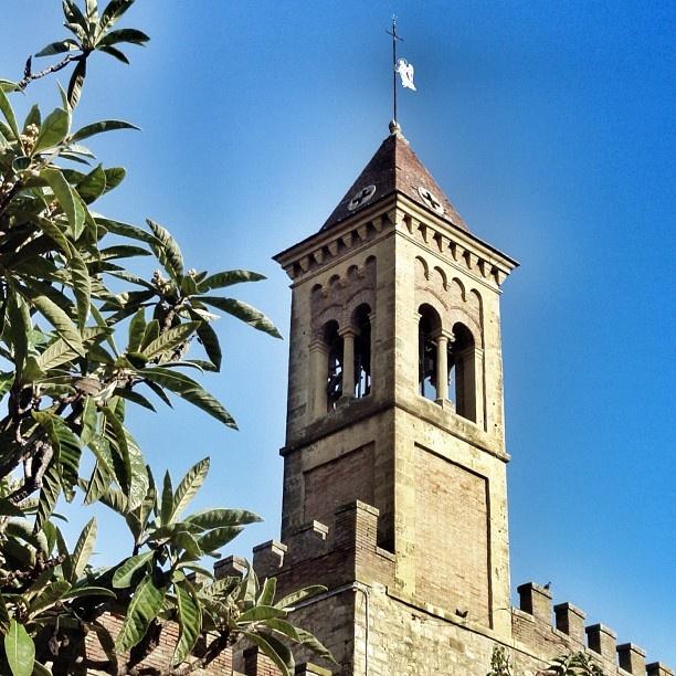 Bolgheri, Toscana #tuscanygram