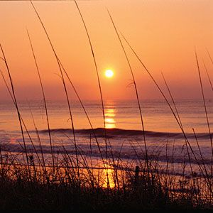 Five Reasons To Visit Jekyll Island | Southern Living