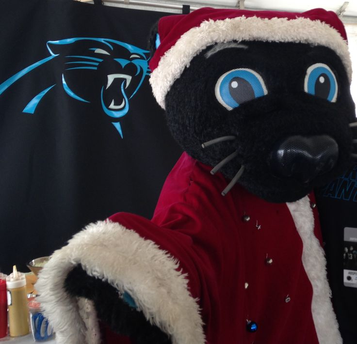 Carolina Panthers Santa Hat: 1000+ Images About Mascot Love On Pinterest