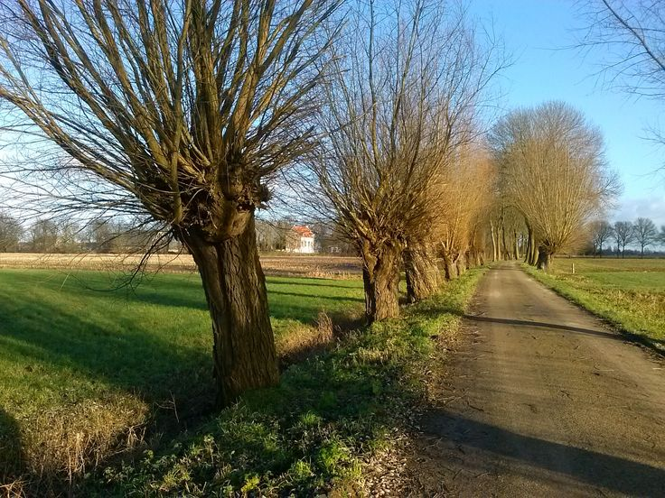 Huis te Lathumweg