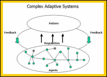 complex adaptive systems essay Most health and healthcare issues are complex  more detailed contracts but the development of complex adaptive systems,  still—an essay by.
