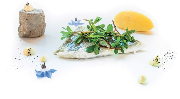 """""""Rombo e patate su maionese di alici e the verde alla verbena"""" #lamadia #lamadiatravelfood #food"""
