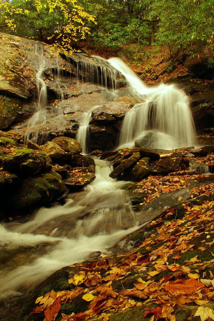 mountains waterfalls forest usa - photo #41