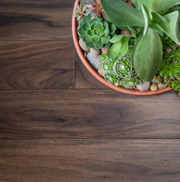 A New Classic Joins the Kentwood Originals Collection - Brushed Acacia Grayling! | Kentwood Floors