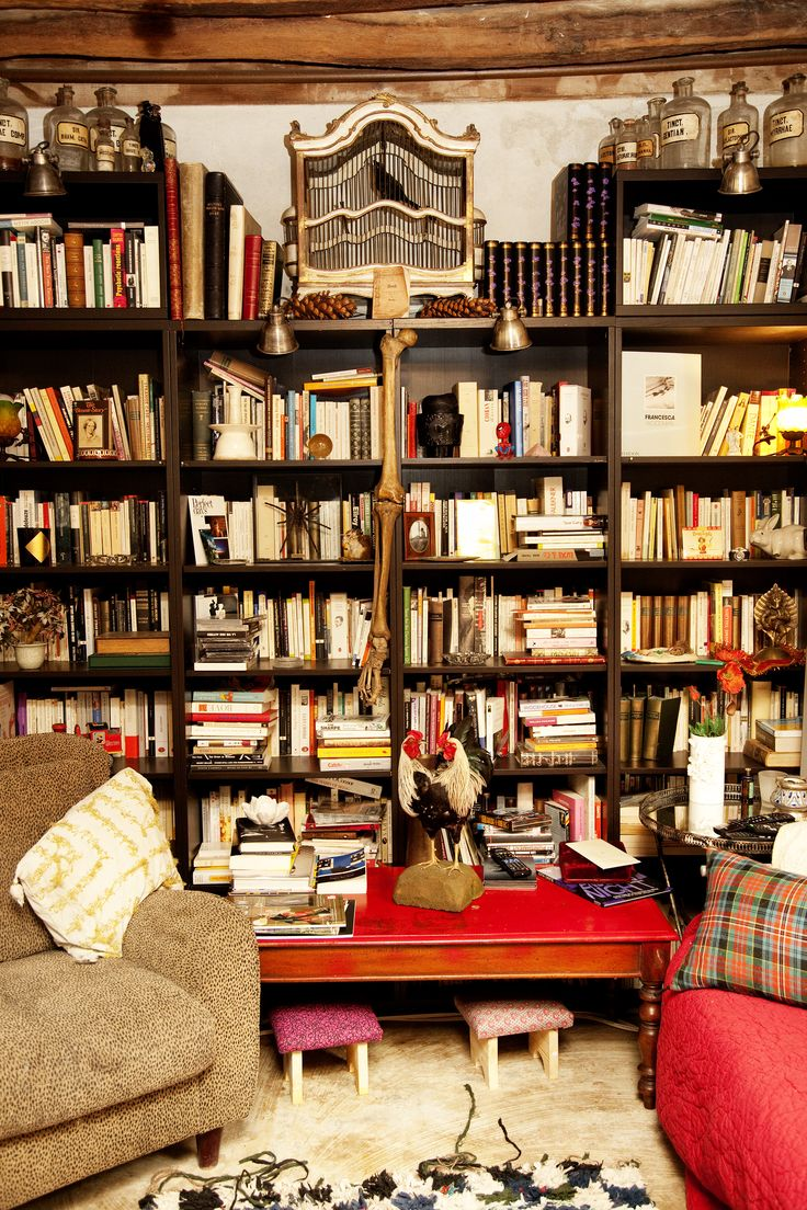 Lou Doillon's Library - The Selby Book