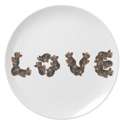 #Love Plate - #yorkshire #terrier #puppy #terriers #dog #dogs #pet #pets #cute #yorkshireterrier