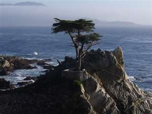 Best Golf Images On Pinterest Golf Courses Golf Stuff And - 7 unforgettable backdrops on californias 17 mile drive