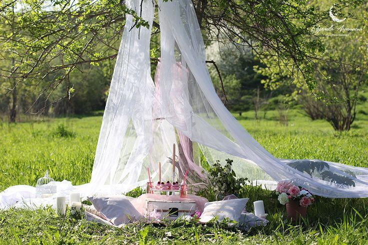 Wedding decor. Pink/ blush. Оформление свадьбы. Декор свадебной фотосессии. Пикник. www.efremova-event.com