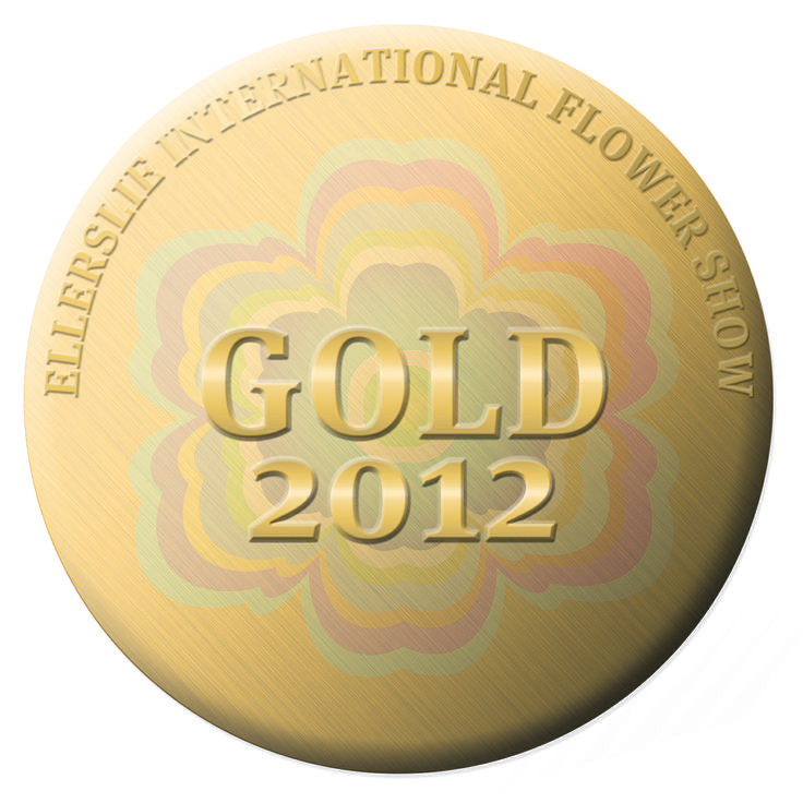 Gold Medal for Exhibit