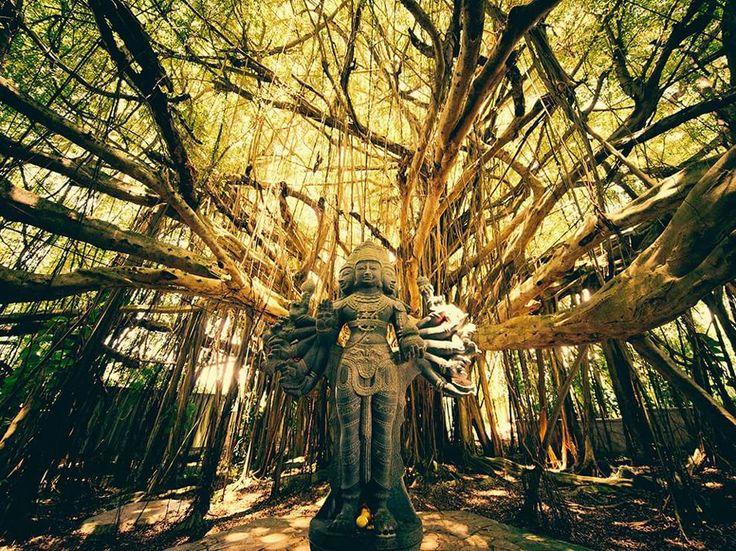 Fotografia di Andrew Hara, National Geographic Your Shot  La statua del dio Shiva presso il monastero indù Kauai alle Hawaii.