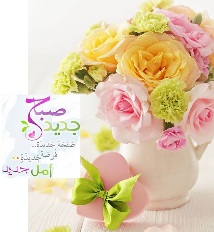 Good Morning In Arabic : Best morning images on pinterest arabic quotes