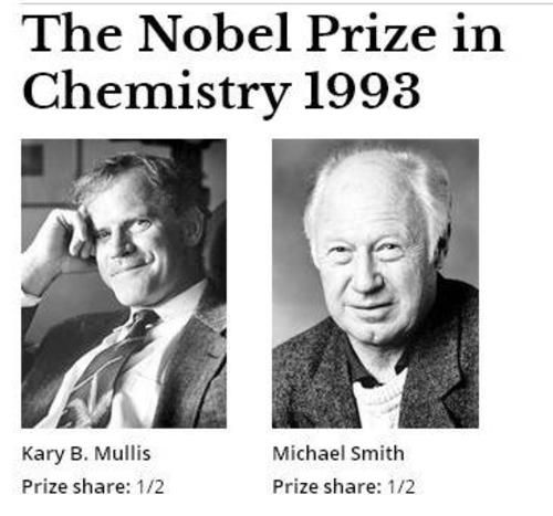 """The Nobel Prize in Chemistry 1993 was awarded """"for contributions to the developments of methods within DNA-based chemistry"""" jointly with one half to Kary B. Mullis """"for his invention of the polymerase chain reaction (PCR) method"""" and with one half to Michael Smith """"for his fundamental contributions to the establishment of oligonucleotide-based, site-directed mutagenesis and its development for protein studies"""". Photos: Copyright © The Nobel Foundation"""
