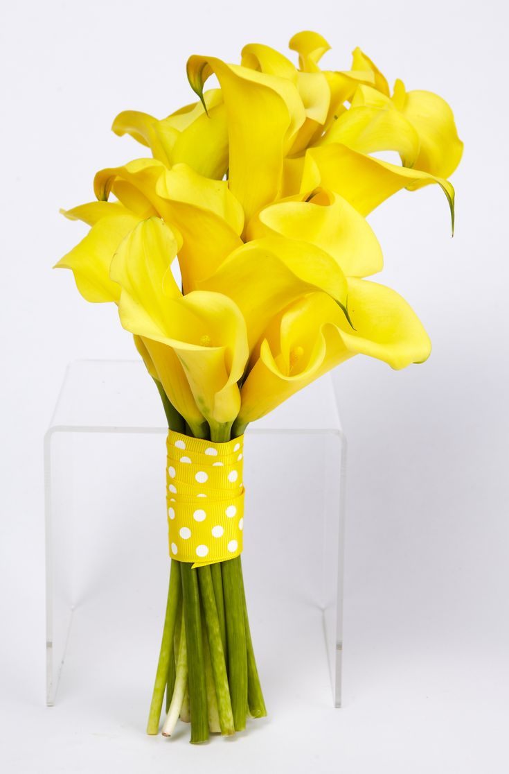 559 best calla lilies images on pinterest flowers calla yellow calla lilly wedding bouquet this is what my bridesmaids will be carrying but with a royal blue ribbon lillies dhlflorist Images